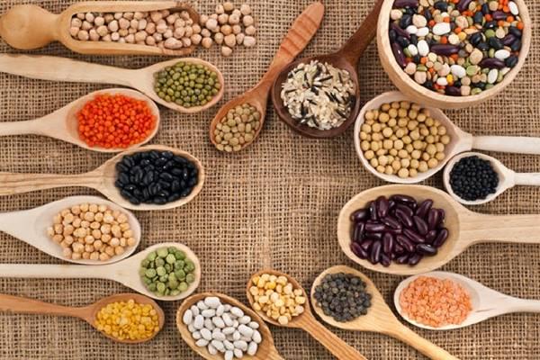 sumber protein nabati