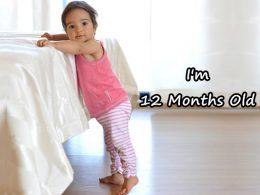 perkembangan bayi umur 12 bulan yang sehat normal