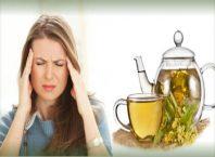 ramuan tanaman obat tradisional sakit kepala