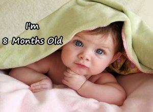 perkembangan bayi umur 8 bulan yang sehat normal