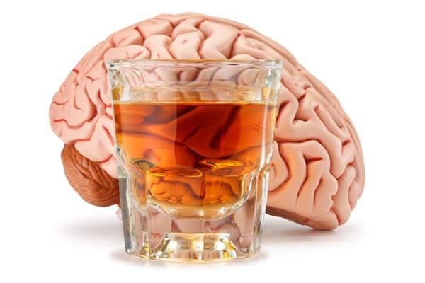 studi terbaru bahaya alkohol merusak otak melebihi marijuana