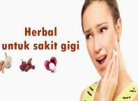 cara mengobati sakit gigi berlubang dengan herbal terbukti alami