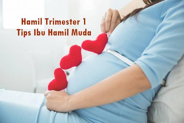 tips ibu hamil muda